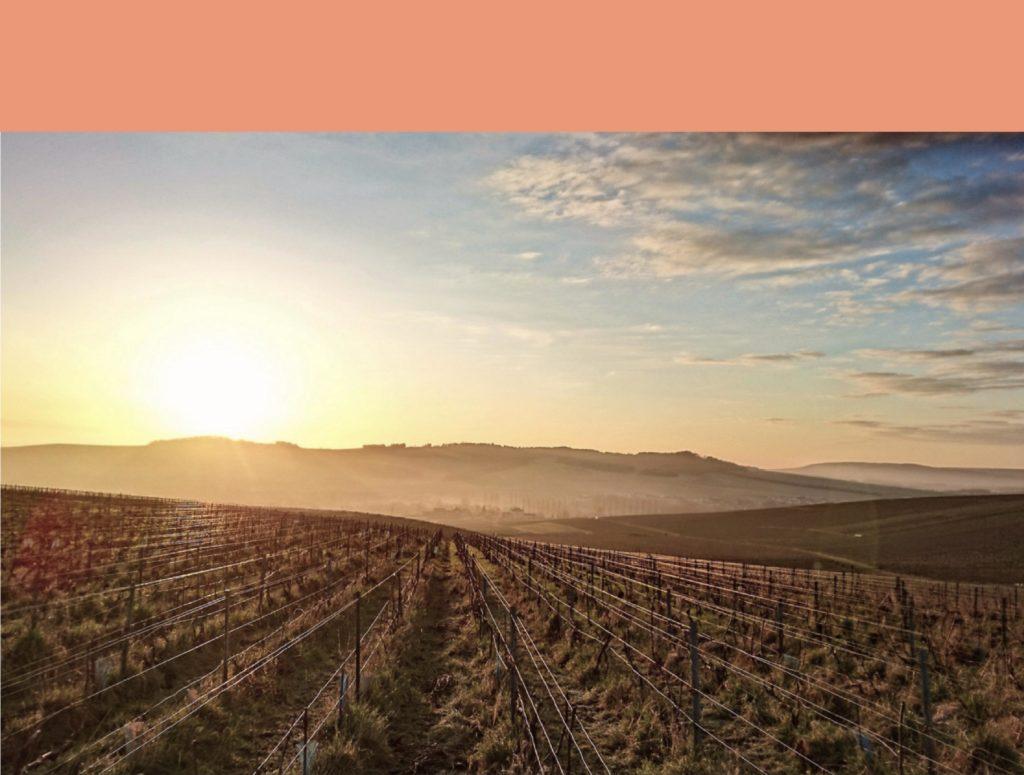 Les Bancels terroir Côte de Beaune crémant de Bourgogne Parigot